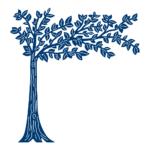 Cherry Tree (D626)